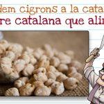 Cigrons a la catalana™