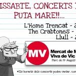 Vas al Mercat de Música Viva de Vic?